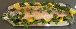 Fukushima salmon